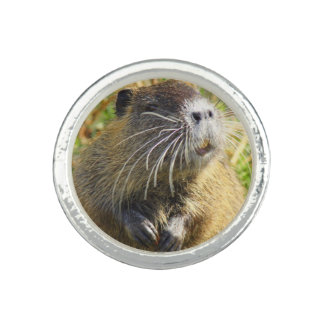 Beaver Photo Ring