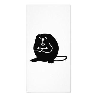 Beaver Photo Card