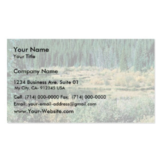 Beaver Pond Double-Sided Standard Business Cards (Pack Of 100)