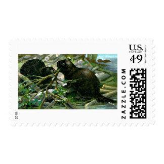 Beaver Postage