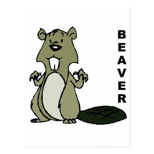 Beaver Postcard