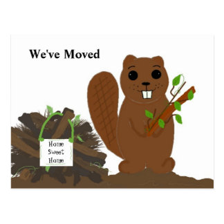 Beaver with Dam - We ve Moved Post Cards