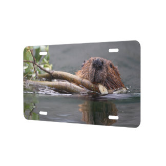 Beaver Working License Plate