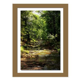 Beavers Bend State Park photo postcard