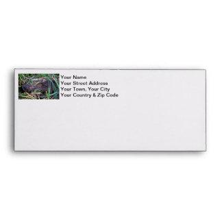 Beavers Kissing Photo Envelopes