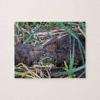 Beavers Kissing Photo Jigsaw Puzzle