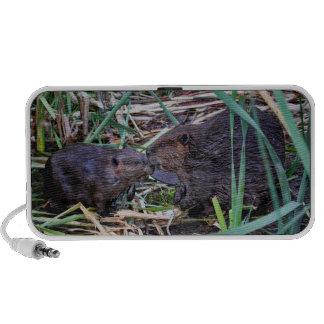 Beavers Kissing Photo Portable Speaker