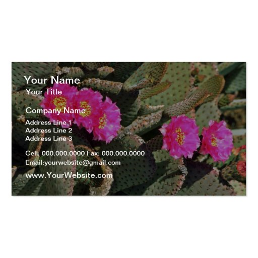Beavertail Cactus flowers Business Cards