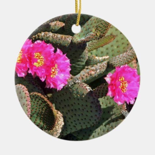 Beavertail Cactus flowers Double-Sided Ceramic Round Christmas Ornament