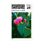 Beavertail Cactus Flowers Postage Stamps