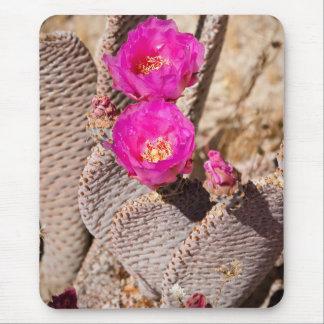 Beavertail Cactus Mouse Pad