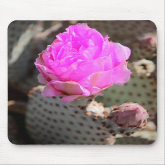 Beavertail Cactus Mousepad