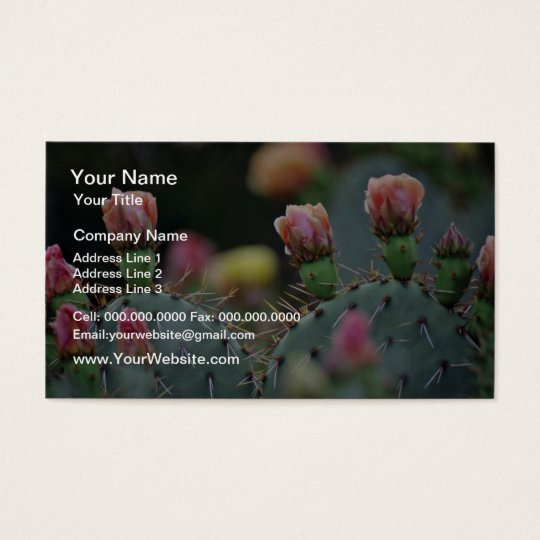 Beavertail Cactus Pink flowers Business Card