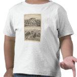 Beazell, English residences, farms T Shirts