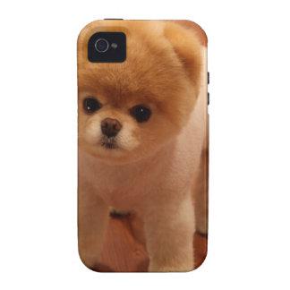 Bebé adorable del perrito del mascota del perro de iPhone 4/4S carcasas