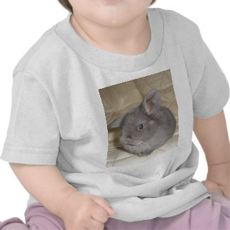 Bebé adorable mini Lop Camisetas