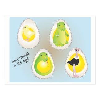 Bebé-animales en los huevos postal