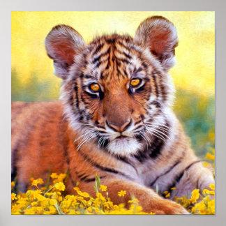 Bebé Cub del tigre Impresiones