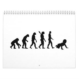 Bebé de la evolución calendarios