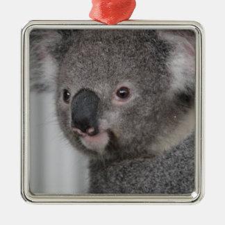 Bebé de la koala adorno navideño cuadrado de metal