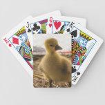 bebé de oro baraja de cartas