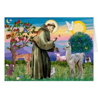 Bebé de St Francis y de la llama Felicitación