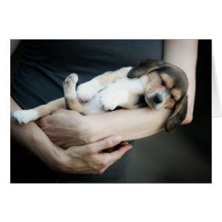 Bebé del beagle que duerme en brazos tarjeta de felicitación