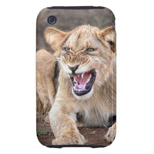 Bebé del cachorro de león tough iPhone 3 cárcasas