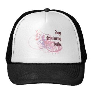 Bebé del entrenamiento del perro gorra