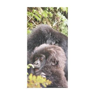 Bebé del gorila de montaña 20 x 40 adentro. Lona Lona Envuelta Para Galerías