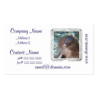 Bebé del león marino plantillas de tarjetas personales
