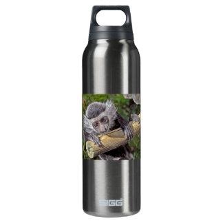 Bebé del mono de Colobus del mono Botella Isotérmica De Agua
