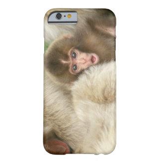 Bebé del mono de la nieve, Jigokudani, Nagano, Funda De iPhone 6 Barely There