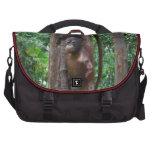 Bebé del orangután en bosque bolsas para ordenador