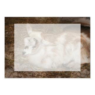 Bebé doeling de la pequeña cabra peluda invitación 12,7 x 17,8 cm