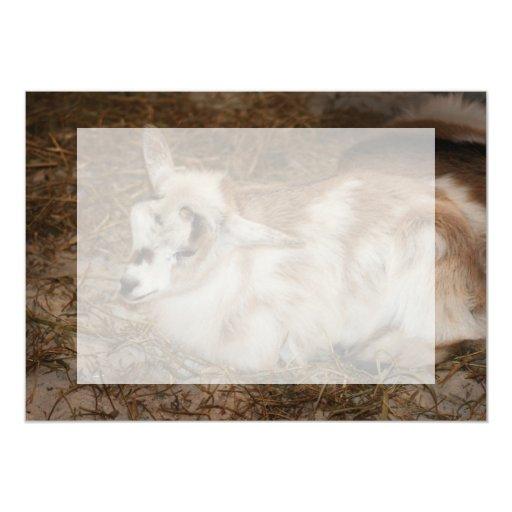 """Bebé doeling de la pequeña cabra peluda invitación 5"""" x 7"""""""