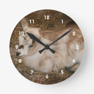 Bebé doeling de la pequeña cabra peluda reloj redondo mediano
