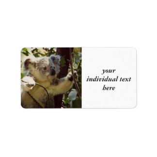 bebé dulce de la koala etiqueta de dirección