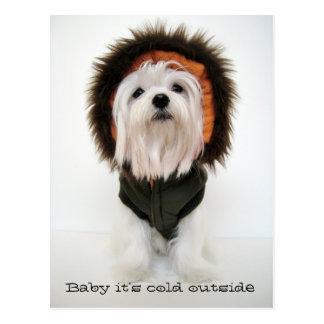 Bebé es exterior frío tarjeta postal