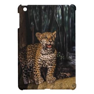 Bebé Jaguar