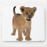 Bebé Mousepad del león Tapete De Ratón