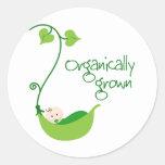 Bebé orgánico crecido etiquetas redondas
