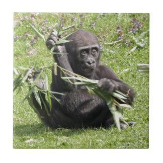 Bebé precioso del gorila teja cerámica