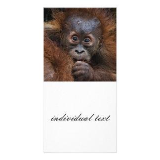 bebé precioso del orang tarjetas fotograficas