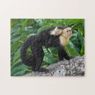 Bebé que lleva del mono adulto del capuchón en su rompecabezas con fotos