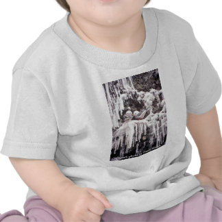 Bebé T/Kittiwake de patas rojas de decano Kildaw Camiseta