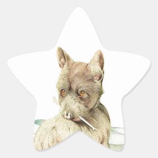 ¡Bebé Terrier escocés - LINDO ESTUPENDO! Pegatina En Forma De Estrella