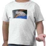 Bebé Tired-Apparel. Camisetas