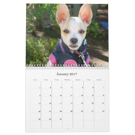 ¡Bebé, todo sobre perros!! Calendario