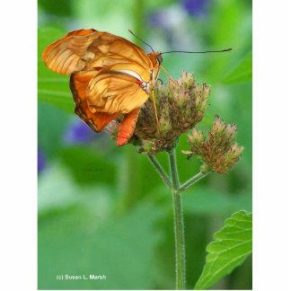 Bebé tramado a estrenar de la mariposa, alas anara llavero fotográfico